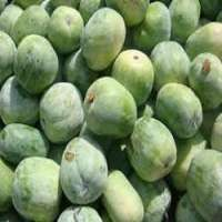 Ash Gourd Manufacturers