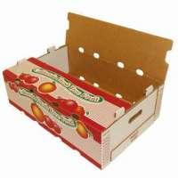 Fruit Carton Box Manufacturers