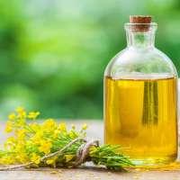 菜籽油 制造商