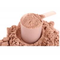 Chocolate Protein Powder Manufacturers