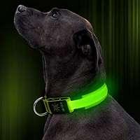 LED Dog Collar Manufacturers