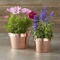 Mini Flower Pot Manufacturers