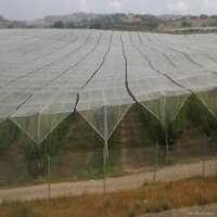 Anti Hail Net Manufacturers