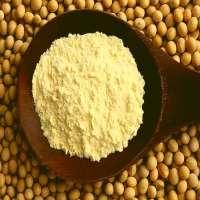 大豆浓缩蛋白 制造商