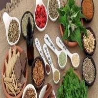Herbal Supplements Manufacturers