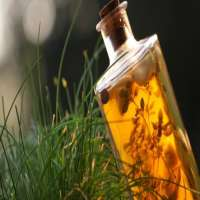 Herbal Disinfectant Manufacturers