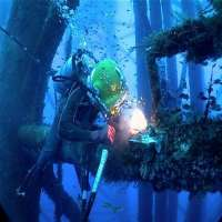 Offshore Diving Services Manufacturers