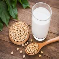 Soy Milk Manufacturers