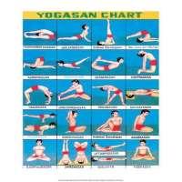 Yoga Chart Manufacturers