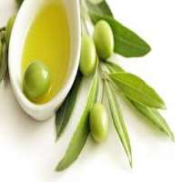 Organic Olive Oil Manufacturers