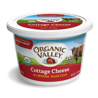 Cottage Cheese Manufacturers
