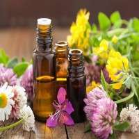 Aromatherapy Essential Oils Manufacturers