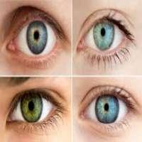 人眼图 制造商