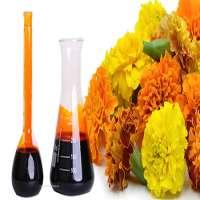 Marigold Oleoresin Manufacturers
