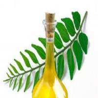 Curry Leaf Oil Manufacturers