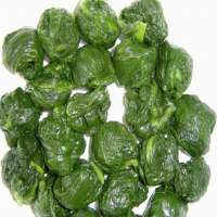 Frozen Spinach Manufacturers