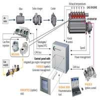 发动机管理系统 制造商