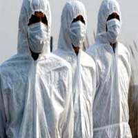 Bird Flu Mask Importers