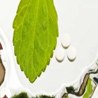 Stevia Tablets Manufacturers