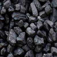 Steam Coal Importers