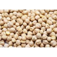 White Chickpea Manufacturers