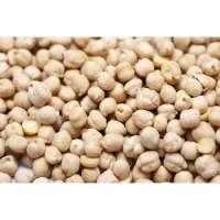 白鹰嘴豆 制造商