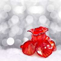 Crystal Rose Manufacturers