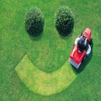 Lawn Maintenance Services Manufacturers