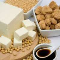 Soy Foods Manufacturers