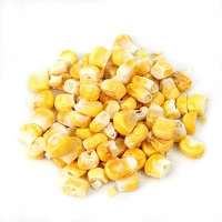 干玉米 制造商
