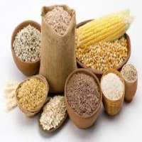 Organic Food Grains Manufacturers