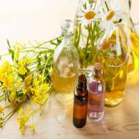 Herbal Medicinal Oil Manufacturers