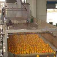 苹果汁厂 制造商
