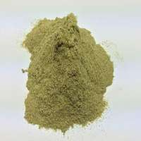 Lemongrass Powder Manufacturers