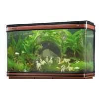 Boyu Fish Tanks Manufacturers