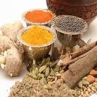 Ayurvedic Food Supplements Manufacturers