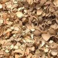 Groundnut Shells Manufacturers