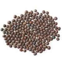 Pulses Manufacturers
