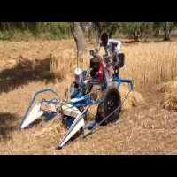 Wheat Cutter Importers