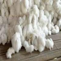 棉纤维 制造商