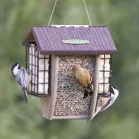 Suet Bird Feeder Manufacturers