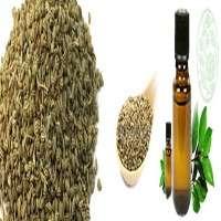 Ajowan Seed Oil Manufacturers