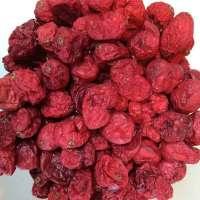 脱水蔓越莓 制造商