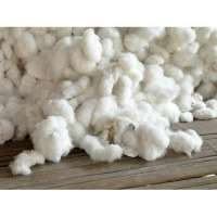 Raw Cotton Manufacturers