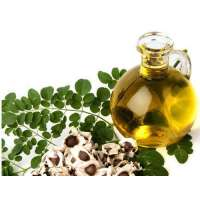 Moringa Oil Manufacturers