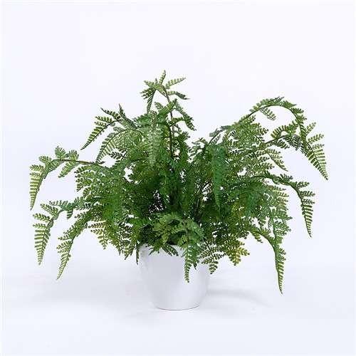 Artificial Fern Plants