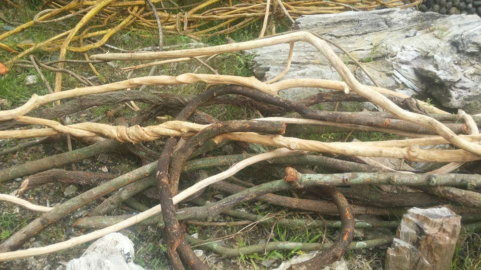 Natural Liana Wood decoration for terrarium, reptiles, birds, vivarium, home decoration, garden
