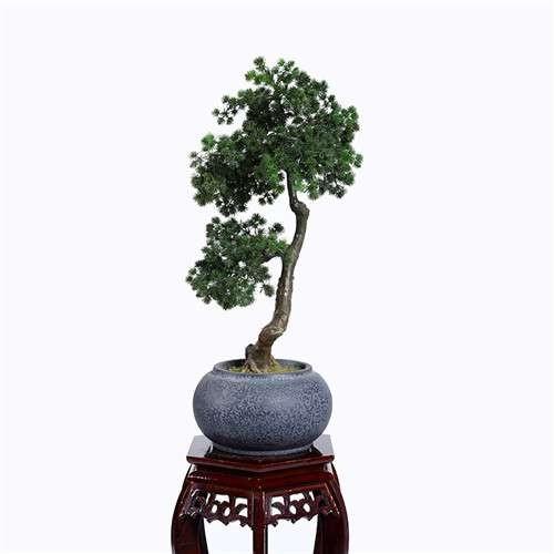 Plastic Pine Bonsai
