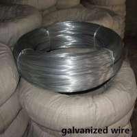 GI Wire Mesh