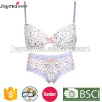Chemical Allover Lace Bridal Ladies Panty And Bra Sets